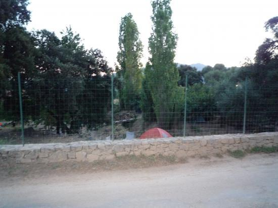 Arrivée au camping de Calenzana